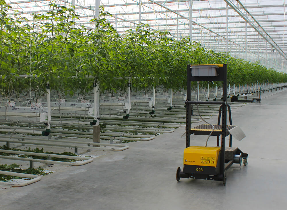 Leaf cutting cart crop cart leaf disposal greenhouse