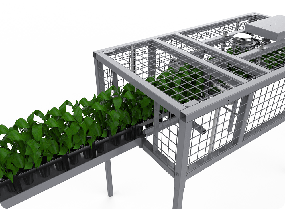 strawberry tray cleaning system